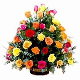 Our Charming Multicolor Roses Basket is more appropriate for Sending your Warm Regards With. Send these through Shop2Hyderabad.