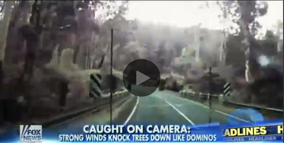 Tri Cities On A Dime: AMAZING VIDEO - THIS DRIVER'S GUARDIAN ANGEL WAS W...