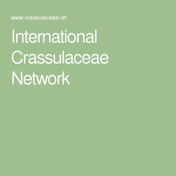 International Crassulaceae Network