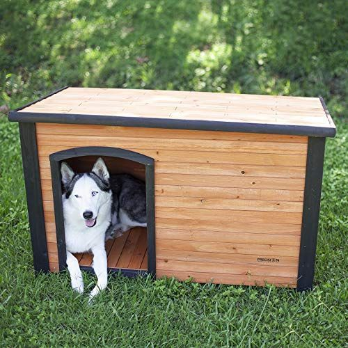 10 Coziest Insulated Dog Houses To Keep Your Pet Snug As A Bug