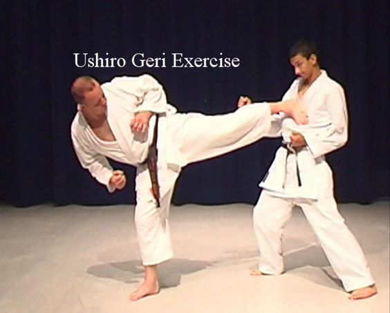 Ushiro Geri Back Kick Shotokan Karate Exercise