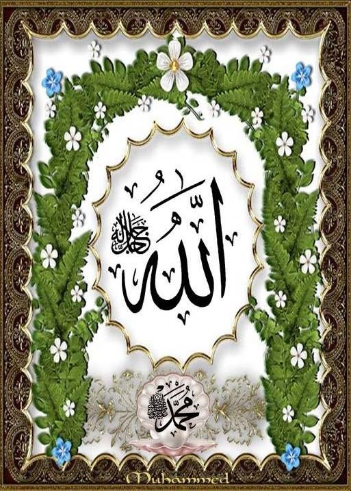 Pin By Shah Nasrullah On Nasrullahshah Allah Islamic Art Islam Facts