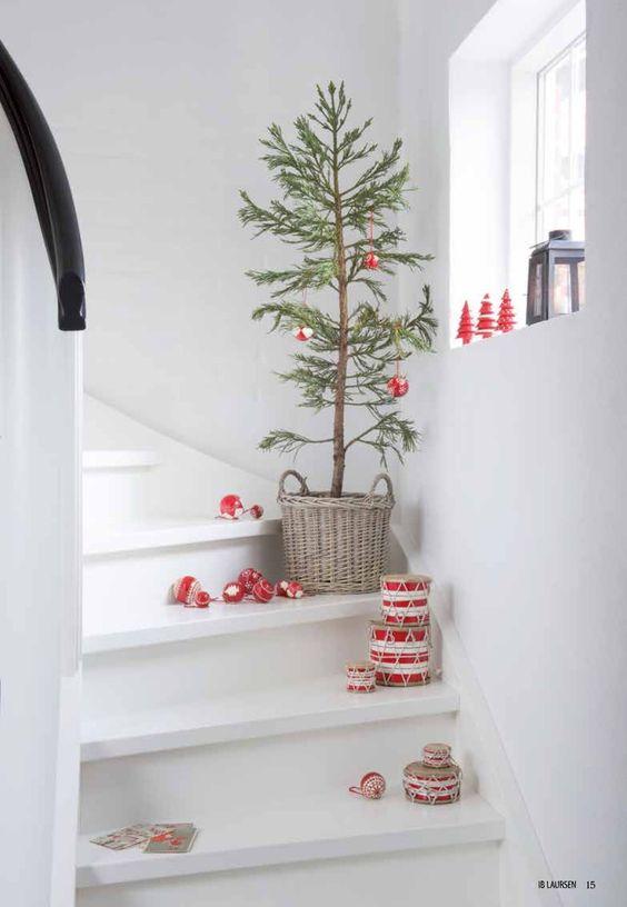 Thuya dans un panier en osier en guise de sapin de Noël