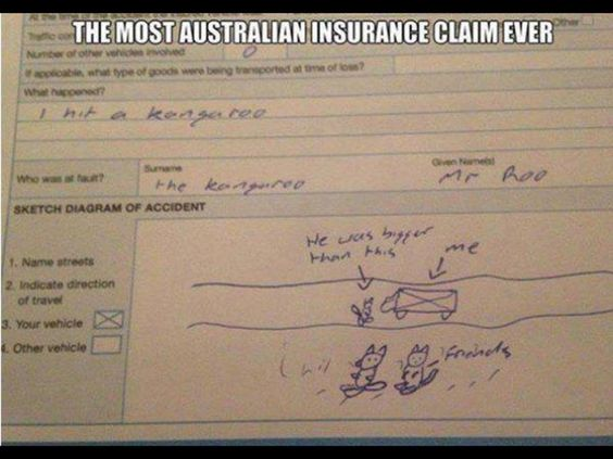 The most Australian insurance claim ever. Car hits ...