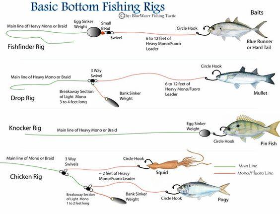 Basic Fish Basic Bottom Fishing Rigs Bluewater Fishing