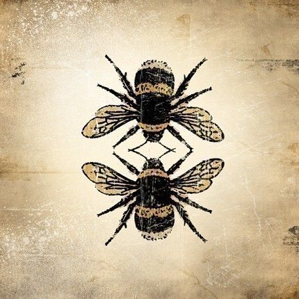 Insect Print - Bumble Bee   Pop art, Dr. who and Bee art