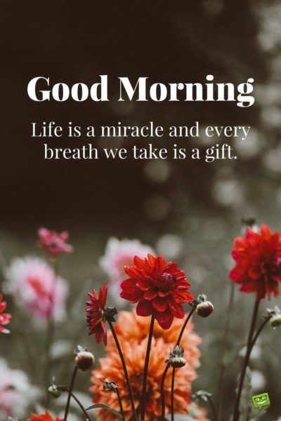 Good Morning.  Life is a miracle and every breath we take is a gift.