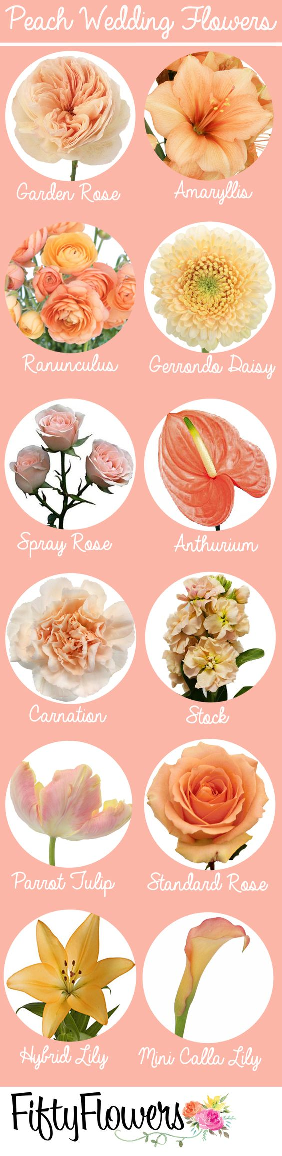 Find the perfect peach flowers for your event at FiftyFlowers.com