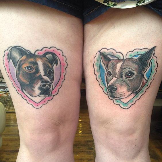 Matching staffy pups from the other day (left healed, right fresh). #tattoo #tattooart #tattoodesign #dogtattoo #staffytattoo #staffy #staffordshirebullterrier #hearttattoo #heart #pettattoo #neotrad #neotradtattoo #neotraditional #newtraditional #rocknrollatattoo #rocknrollatattoostudio #skinsandneedles #skinsandneedlestattoostudio #middlesbrough #teesside #thightattoo