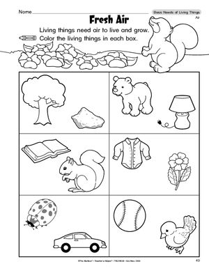 Living and nonliving things worksheets for preschool for Living and nonliving things coloring pages