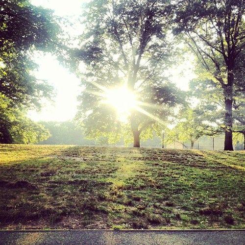 Central Park sunset. July 14, 2012