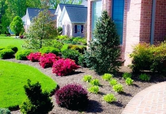 Best Shrubs For Full Sun In Front Of House Ingenious Design Ideas Bushes For Front Yard Front Yard Landscaping Front Yard Garden Front Yard Landscaping Design