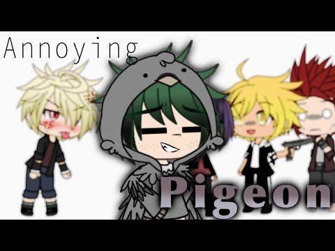 Annoying Pigeon Meme Bnha Mha Gacha Life Pigeon Meme My Hero Academia Episodes Memes