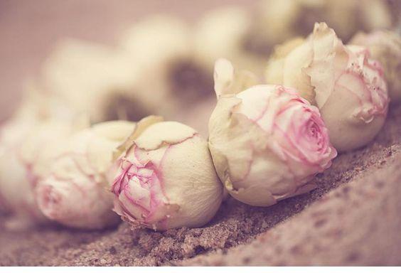 winterliches blumen haarkranz brautshooting 0049 Fotos Anja Schneemann photography Blumen Milles Fleurs VISAGISTIN UND MODEL: Christina Nietert Coton # Baumwolle # Haarkranz # Winter # Wedding