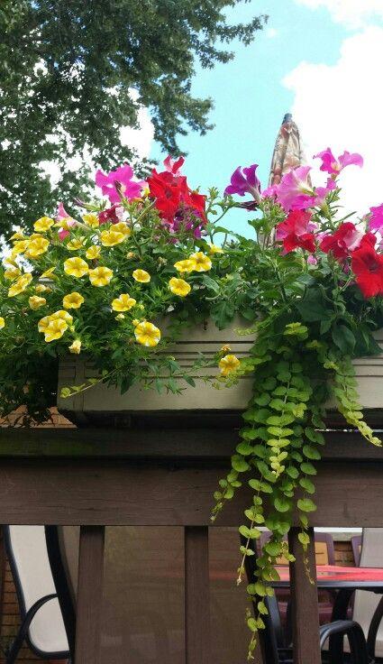 Pretty flower box