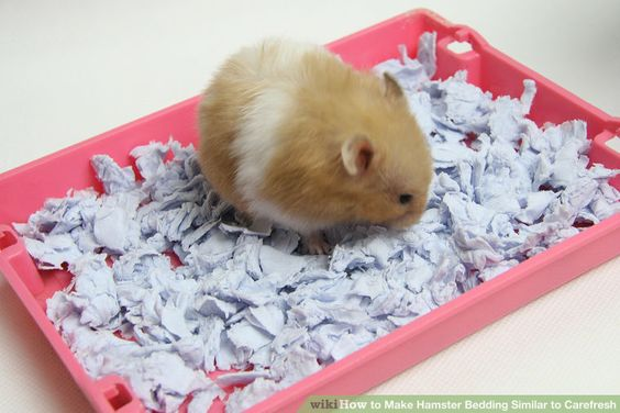 DIY How to Make Hamster Bedding Similar to Carefresh. -  Directions are inside of this pin.