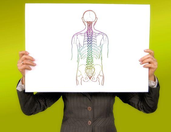 Estas apps sobre el cuerpo humano para smartphones y tablets son ideales para…