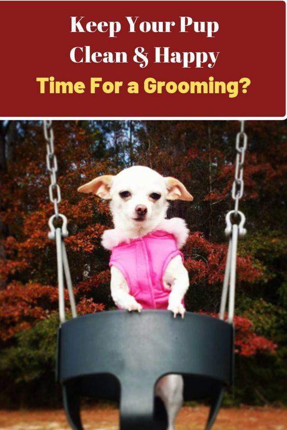 Dog Grooming Log Printable Instant Download Pdf Dog Grooming Dogs Pet Health