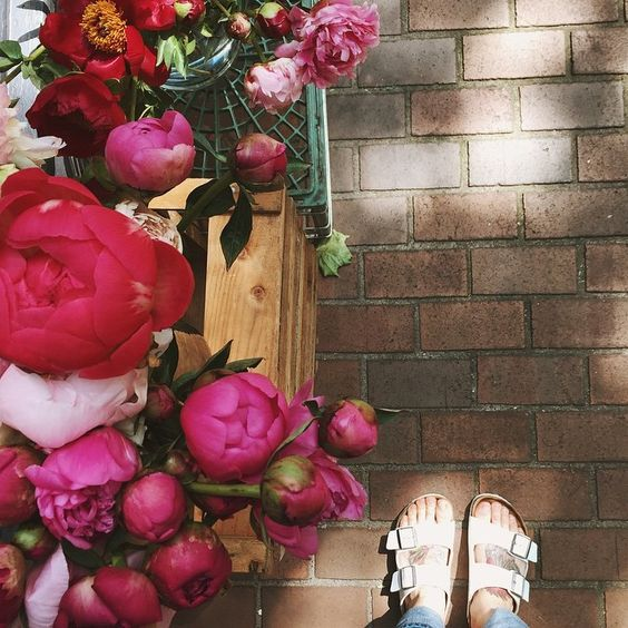peonies and a leisurely brunch // @jojotastic on instagram