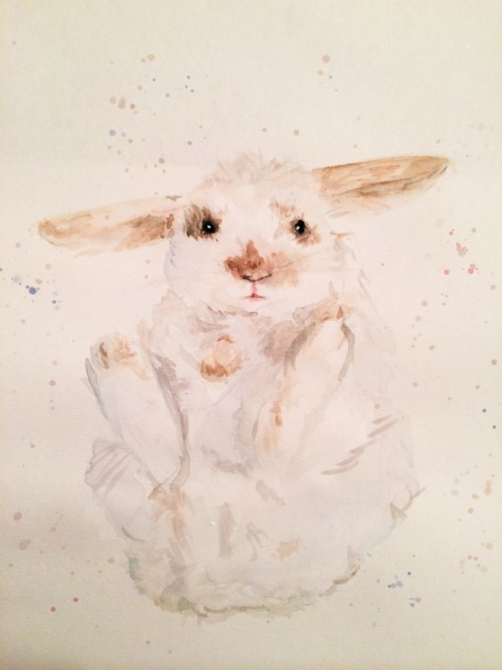 White Rabbit, £20.00