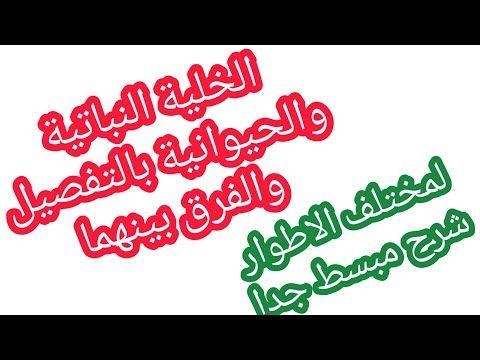 الخلية النباتية والحيوانية بالتفصيل والفرق بينهما Youtube Arabic Calligraphy Calligraphy