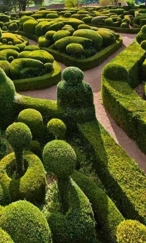 Jardín Secreto #jardin #chicatopia