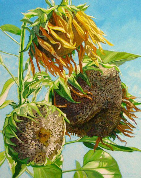 "Neiley Harris: ""sunbaked Birdseed"""