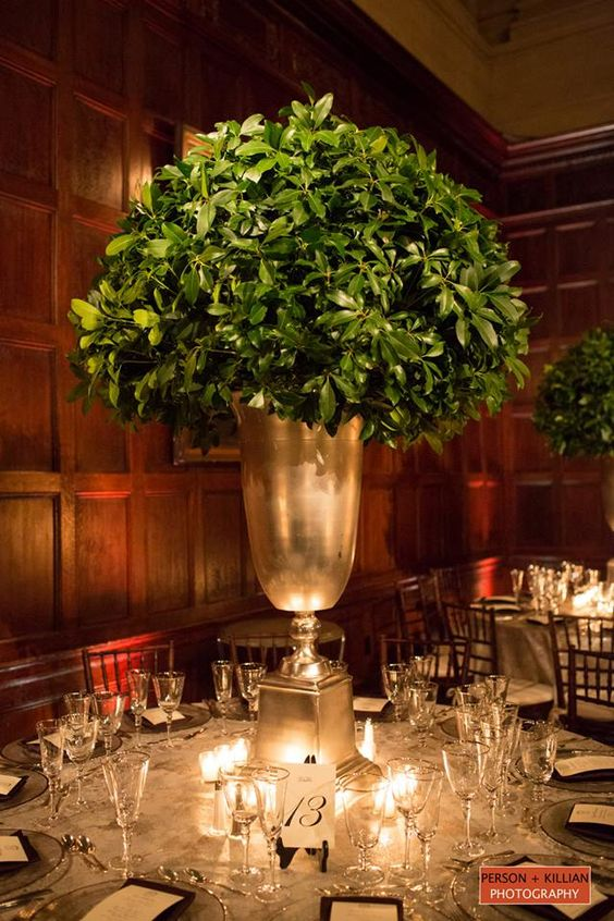 Tall leafy centerpiece.  I would use a sculpted boxwood. Great centerpiece for buffet or dessert table.