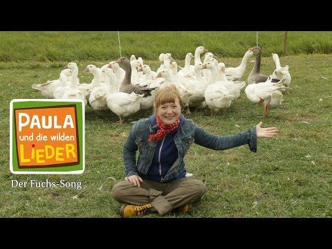 Der Fuchs Song Kinderlied Mit Tieren Paula Und Die Wilden Lieder Youtube Kinder Lied Kinderlieder Fuchs