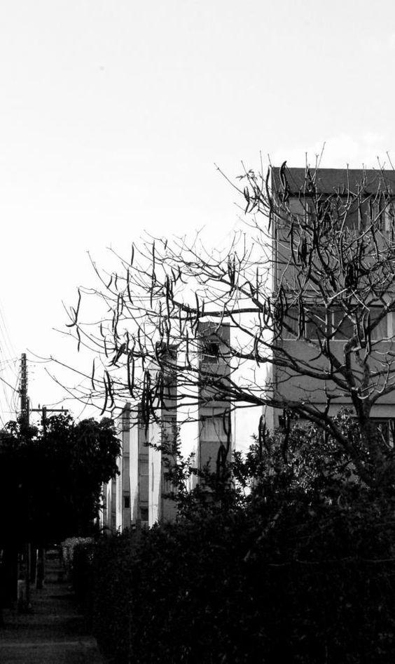 (1) Prédio da CECAP Maria Izabel Projeto do arquiteto Vilanova Artiga
