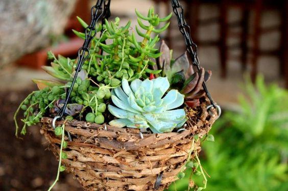 idée de mini-jardin suspendu au balcon