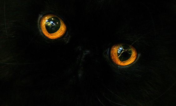 its all in the eyes
