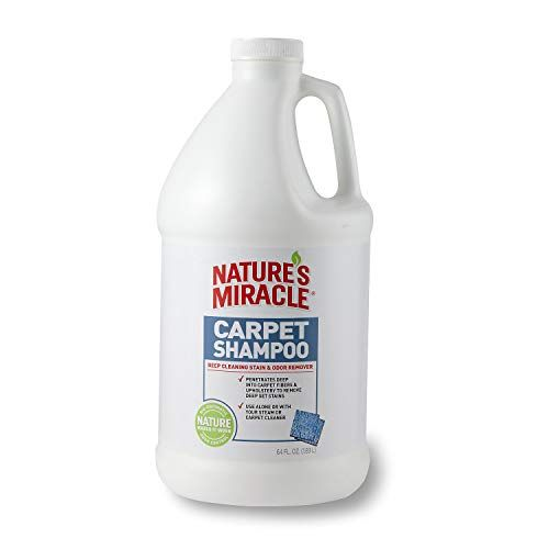 Nature S Miracle Advanced Deep Cleaning Carpet Shampoo Carpet