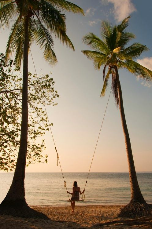 Palm tree sunset swing