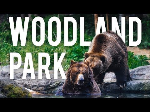 Armchair Travel Experiences That Let You Explore The World From Your Living Room Woodland Park Woodland Park Zoo Long Beach Aquarium