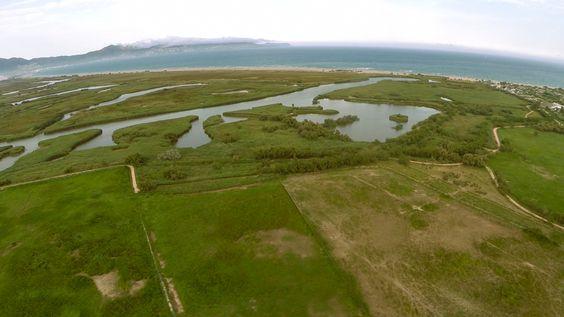 Vista panoràmica dels Parc Natural dels Aiguamolls de l'Empordà