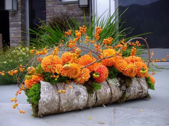 #autumn So simple on the bark with moss. The Bittersweet just makes this lovely design Pop