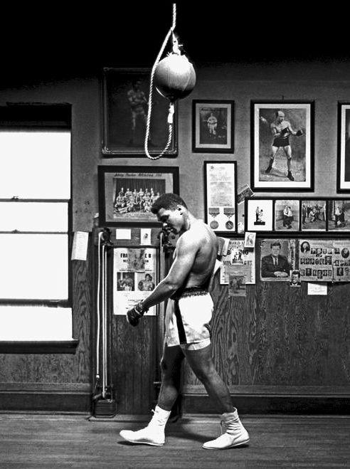 Cassius Marcellus Clay, Jr. Camino como campeón, frente en alto, hombros bajos y…