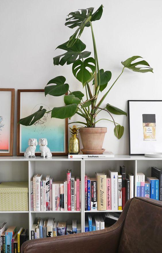 Flawless Interior Modern Style Ideas