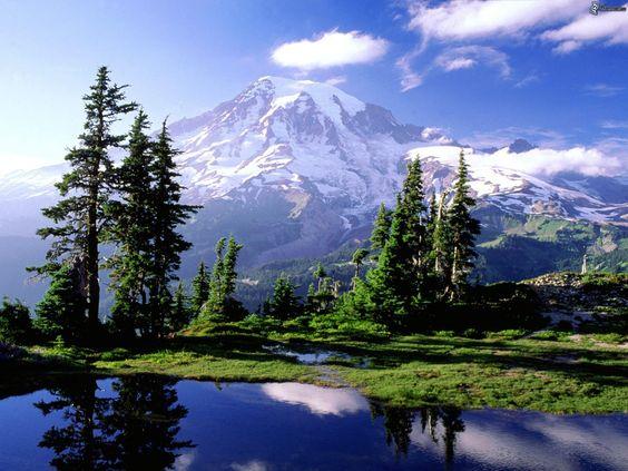 mountains trees lake reflection mount rainier - Google Search