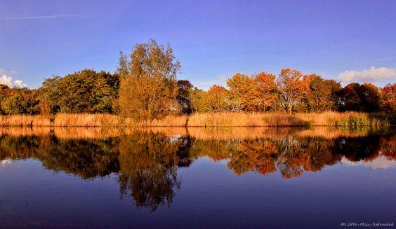 autumn reflections by Little-Miss-Splendid