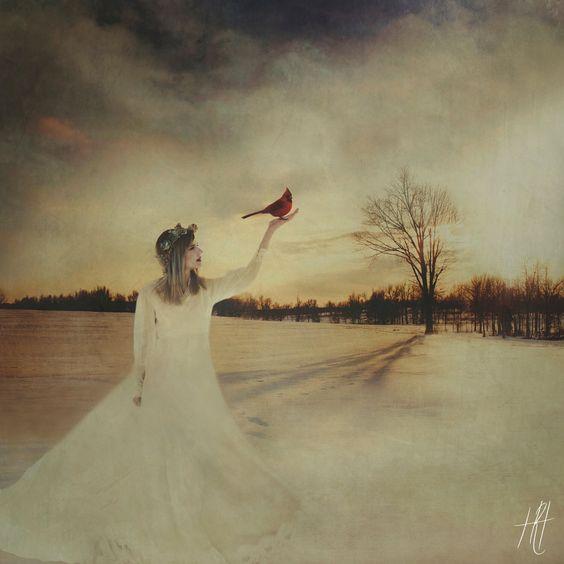 """""""Hope"""" Fine Art Photograph Print https://www.etsy.com/listing/239966516/surreal-portrait-photograph-cardinal"""