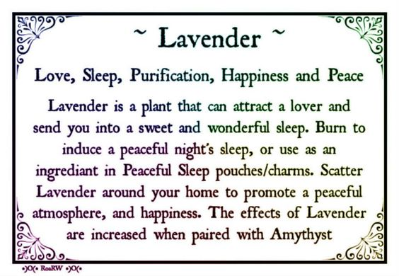 .Lavender Correspondences: