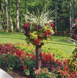 kinsman garden planter baskets on a stand- love it