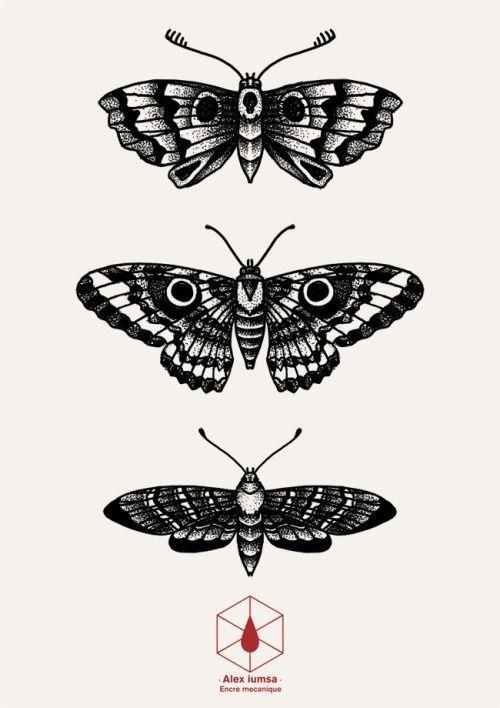 Mothblackwork Blackwork Butterfly Dotwork Tumblr Mothmoth Dotwork Butterfly Tumblr Motten Tattoo Armeltatowierungen Insekten Tattoo