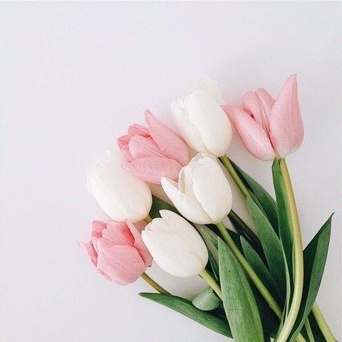 울산인테리어 티디컴퍼니/ 똑똑똑~! 감성배달 interior deco 꽃으로 새로운 공간을 인테리어화병 : 네이버 블로그