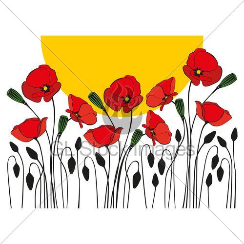 Poppy Flowers Illustration · GL Stock Images