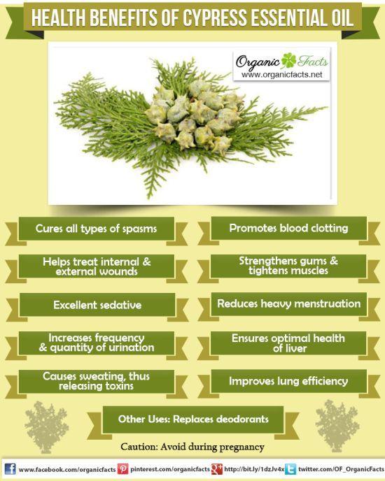 Health Benefits of Cypress Essential Oil: The health benefits of Cypress Essential Oil can be attributed to its properties as an astringent, antiseptic, antispasmodic, deodorant, diuretic, hemostatic, hepatic, styptic, sudorific, vasoconstricting, respiratory tonic and sedative substance.
