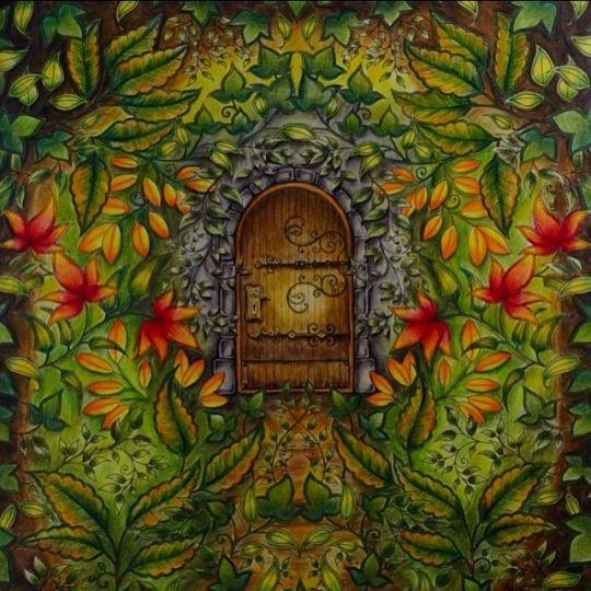Johanna basford colouring gallery enchanted forest for El jardin secreto johanna basford