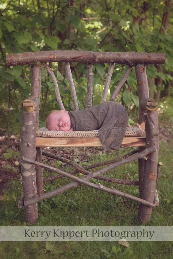 Tree branch bench newborn portrait